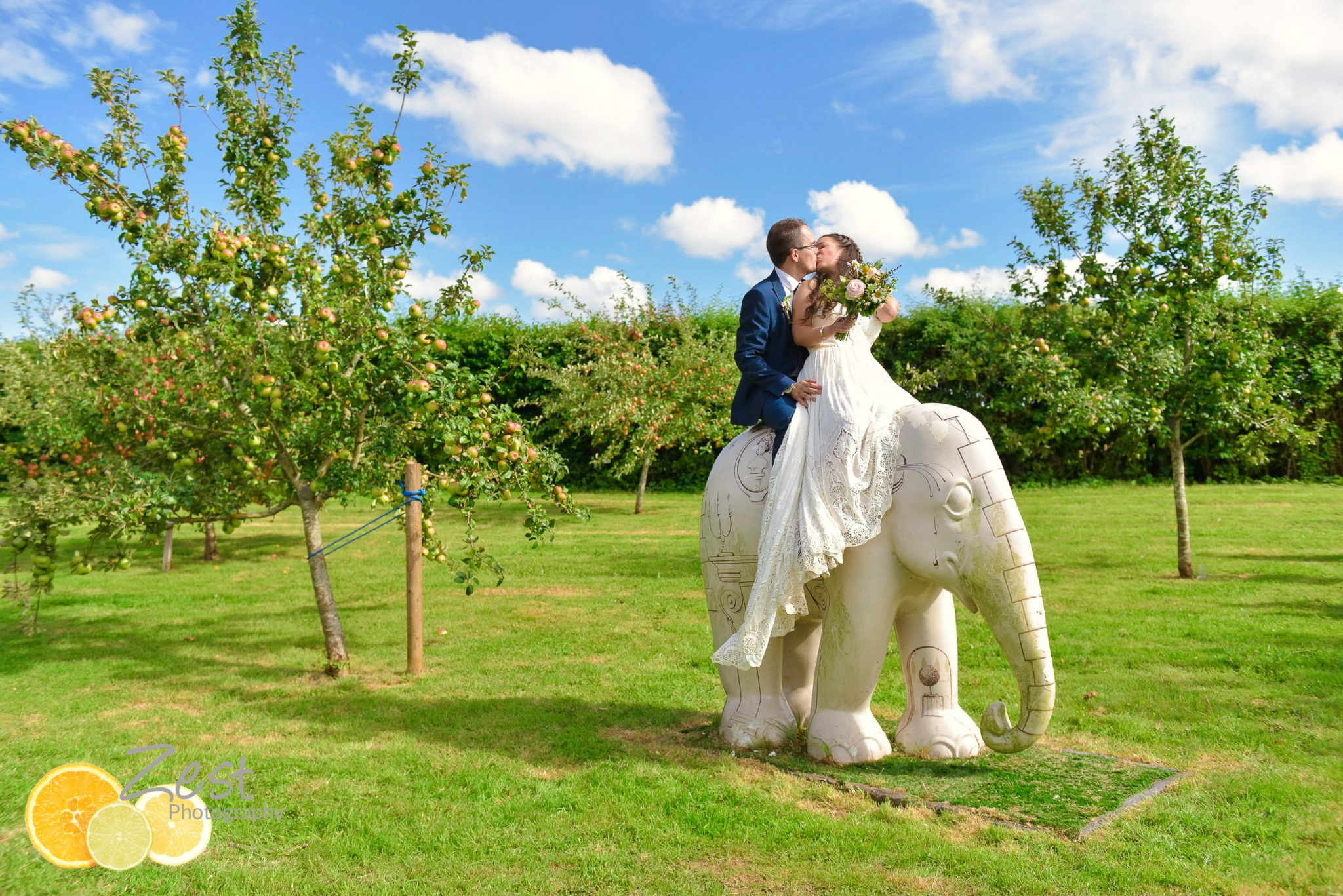 bride and groom at grittenham barn on an elephant
