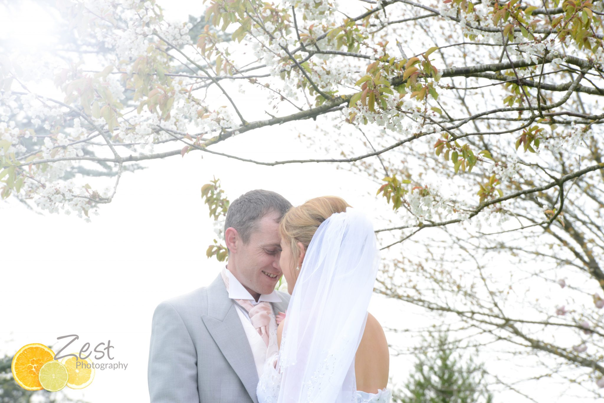 kiss under a blossom tree at hilton avisford